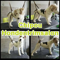 Chipou Hondentrimsalon